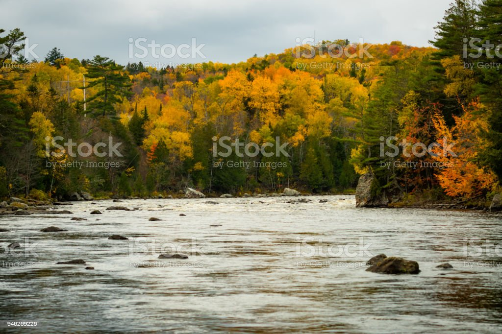 Autumn Colors Brighten up the Shore stock photo
