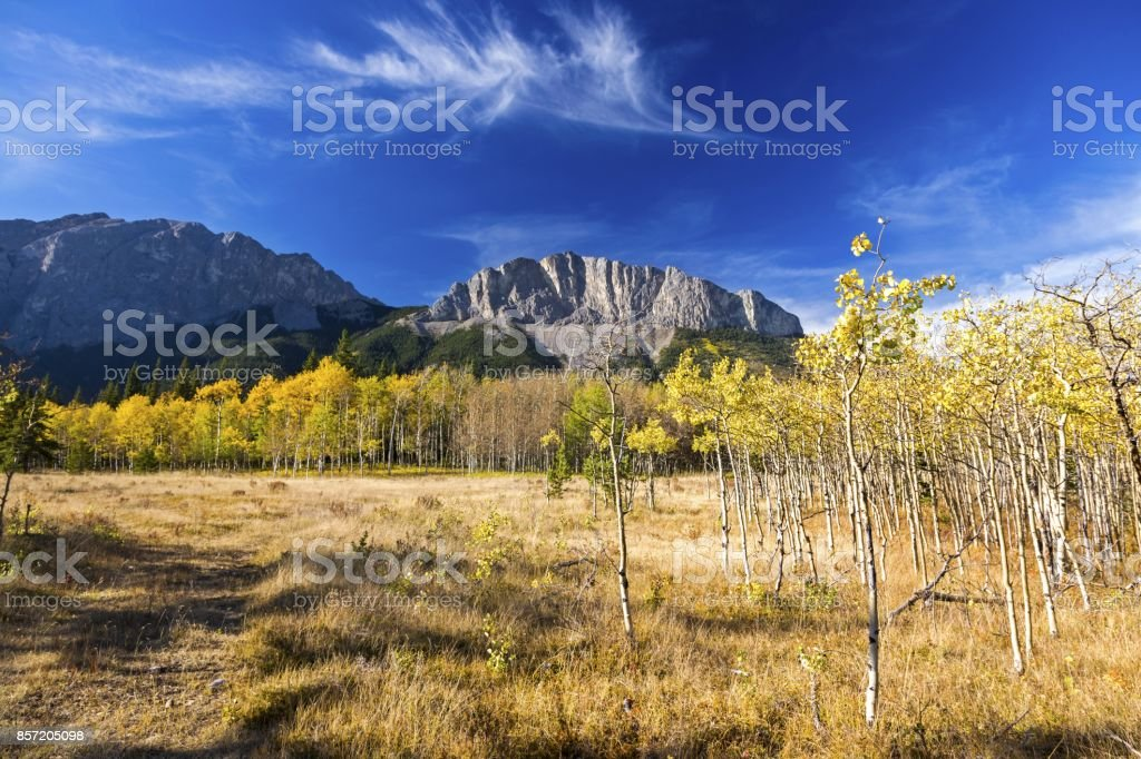 Autumn Colors Change in Alberta Foothills stock photo