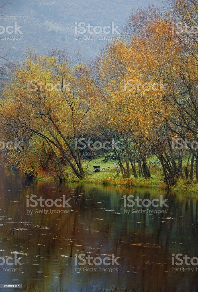 Осень цвета-II Стоковые фото Стоковая фотография