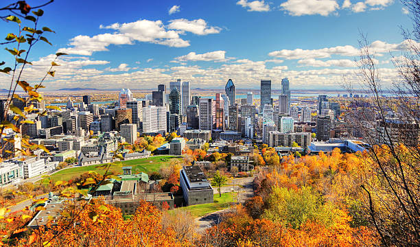 autumn colors in montreal city - canada stockfoto's en -beelden