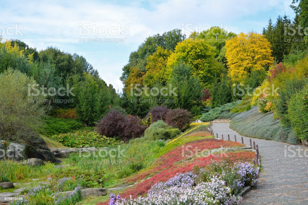Autumn colors in the National Dendrology Park of Sofiyivka, Uman, Ukraine. stock photo