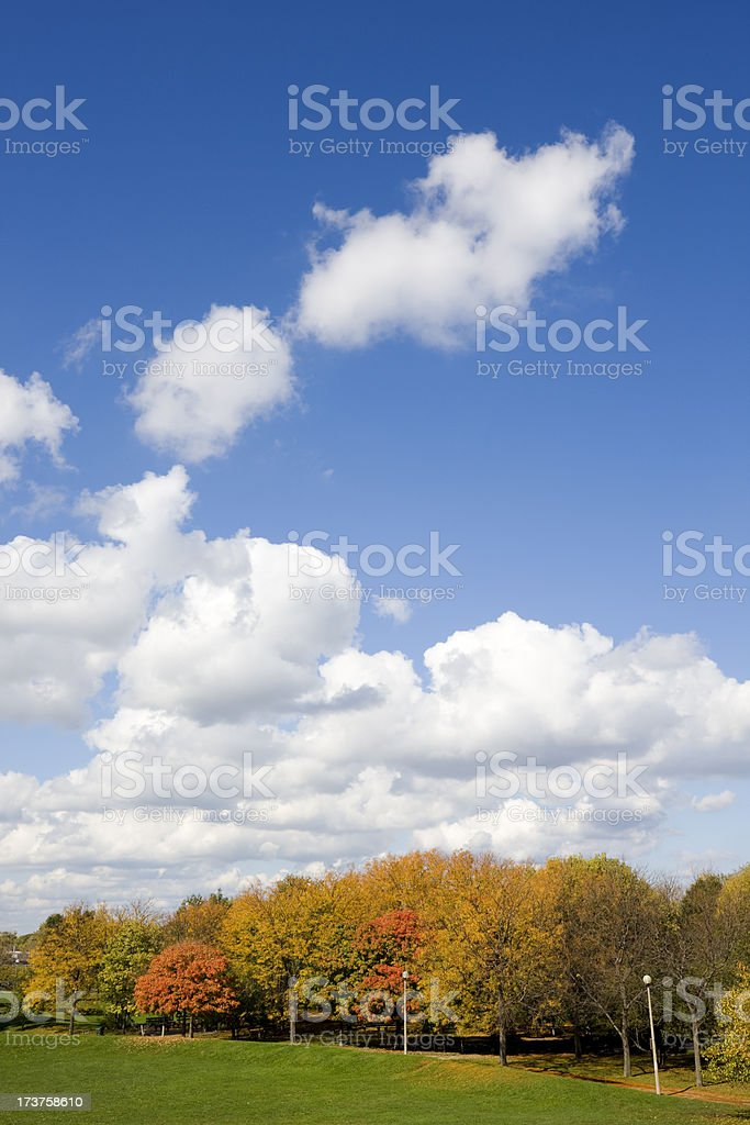 Autumn colors in Warren Park Chicago royalty-free stock photo
