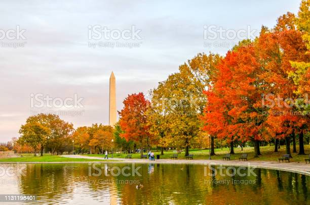 Photo of Autumn Colors in Washington D.C.
