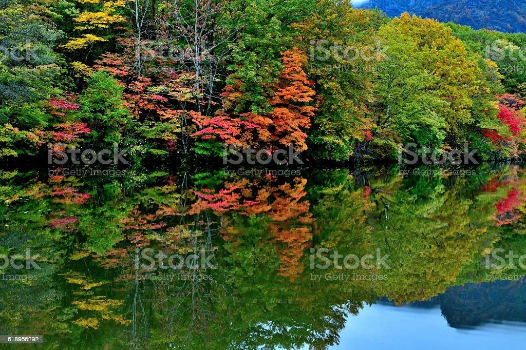 Autumn Colors of Kagami-ike, Nagano, Japan stock photo