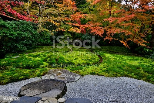 Autumn Colors Of Kyoto Rurikoin Temple Stock Photo & More Pictures of Autumn
