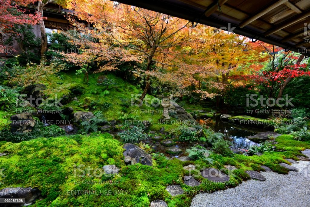 Autumn Colors of Kyoto: Ruriko-in Temple zbiór zdjęć royalty-free