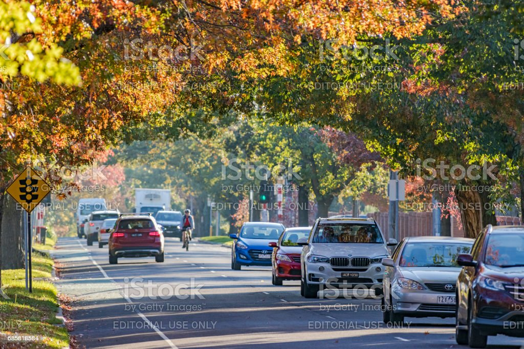 Autumn colors on busy suburban road with traffic and cyclist stock photo