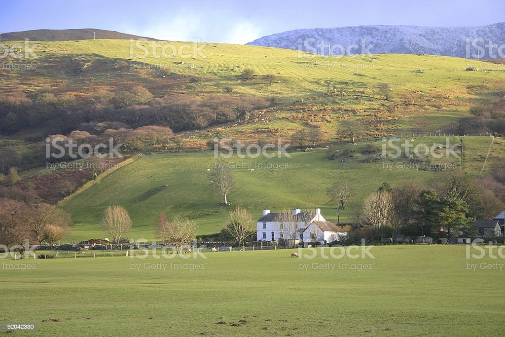 Autumn colors on the hills of Wales with Snowdonia background royalty-free stock photo