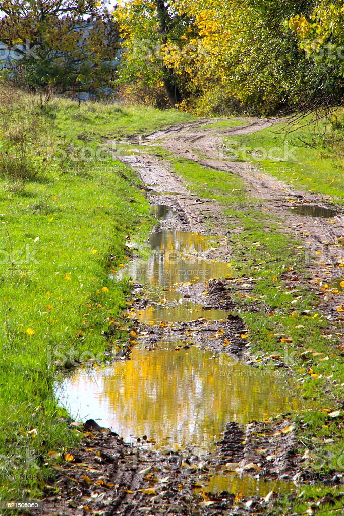 Autumn colors puddles photo libre de droits
