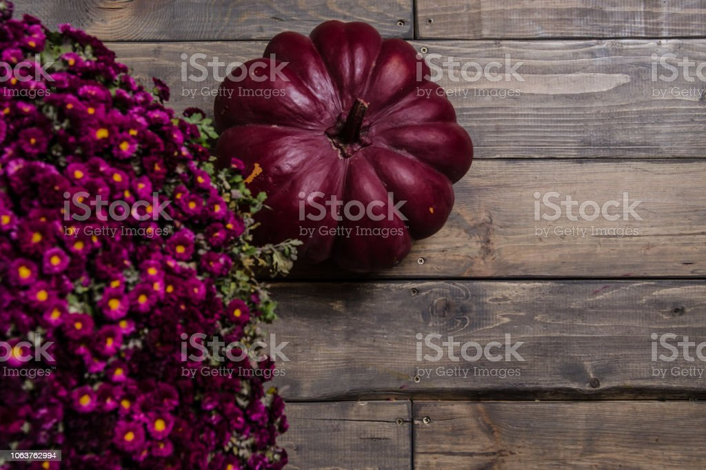 Autumn colors. Pumpkins on a wooden table. Textured background. Dark boards. Brown wood plank wall stock photo