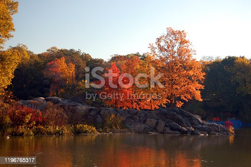 Autumn colors surround the shore of the lake in New York's Central Park