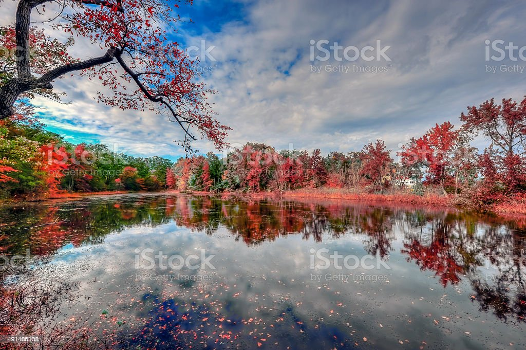 Autumn colors reflecting in a maryland pond stock photo