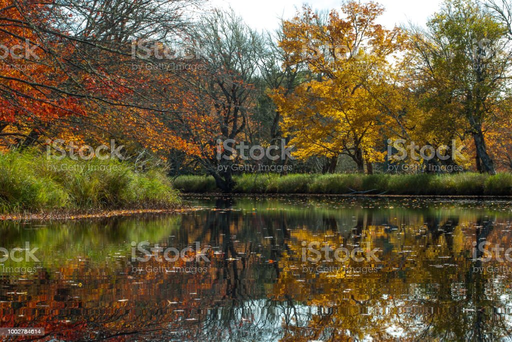 Autumn colors reflecting in a slow moving river. stock photo
