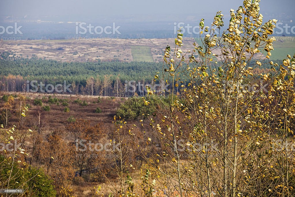 Autumn colors rural landscape near Ogrodzieniec, Poland royalty-free stock photo