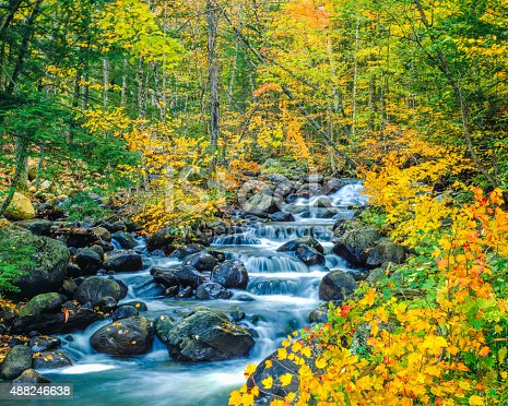 Browns Creek cascading waters lined with autumn colors of hardwood forest in the Green Mountains of Vermont