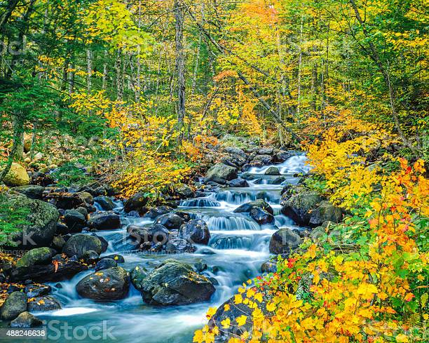 Photo of Autumn colors Underhill State Park Green Mountains, VT