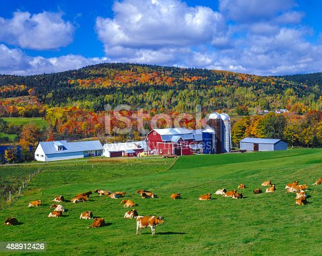 A green pasture fills the foreground leading back the a farm in the hillsides of the Green Mountains followed by a cloudscape sky, Vermont