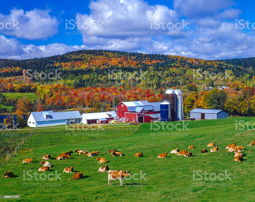 Herbst Farben mit farm in den Green Mountains, VT – Foto
