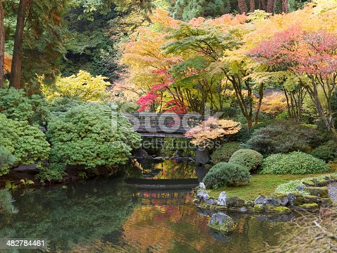 A Fall day looking into colorful trees and a pond at the Portland Japanese Garden. The Strolling pond is in the picture. Reflections of the maple trees can be seen in the pond. A footbridge is in the background. Koi can be seen in the foreground if looking closely. This is located in the Pacific Northwest in in Portland, Oregon. I am a Photographer level member of the Portland Japanese Garden as required by the Garden for Commercial use of photos.