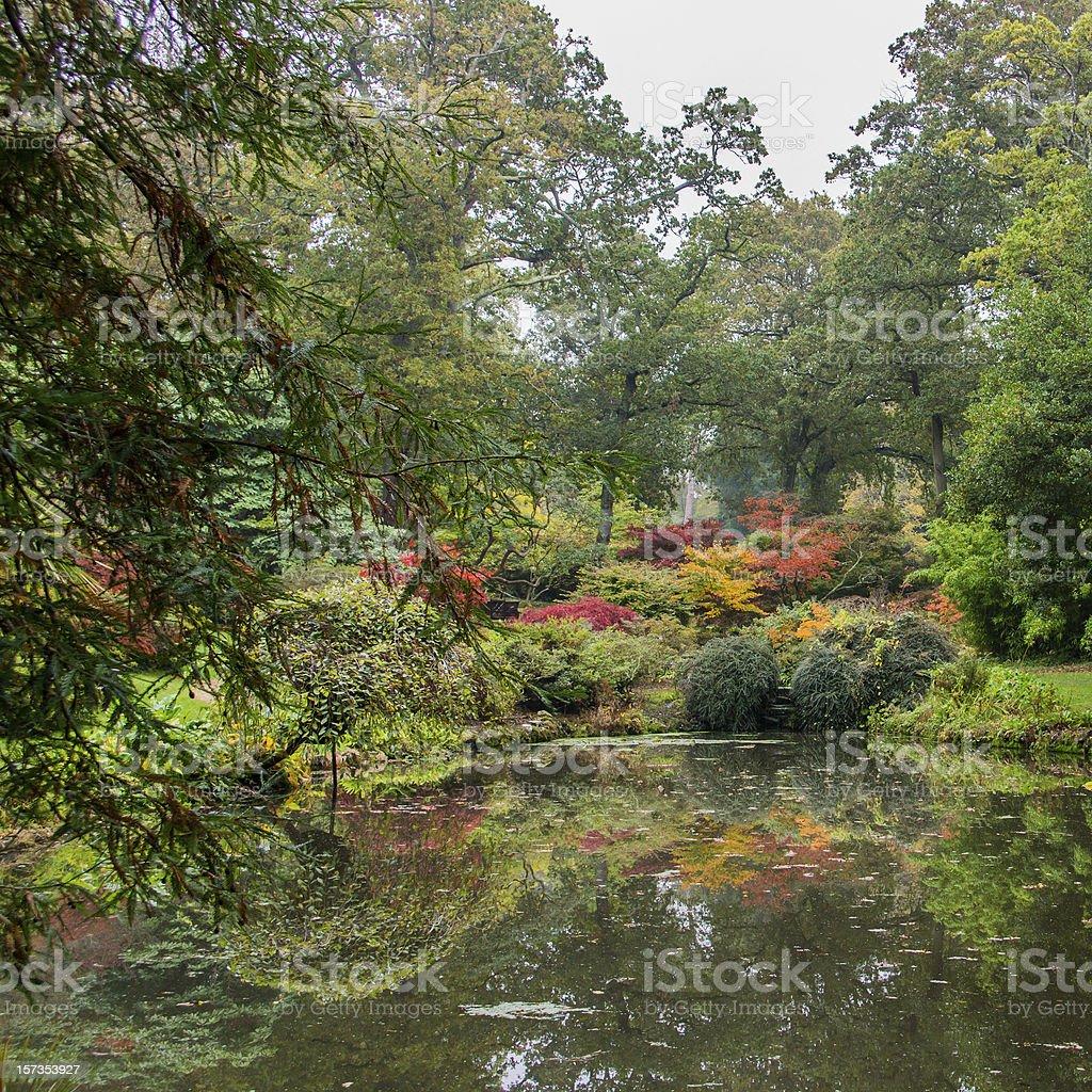 Autumn Colour stock photo