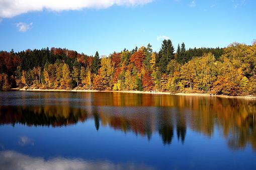 istock Autumn coloured trees mirroring in Mseno Reservoir 492232428