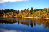 istock Autumn coloured trees mirroring in Mseno Reservoir 492232428