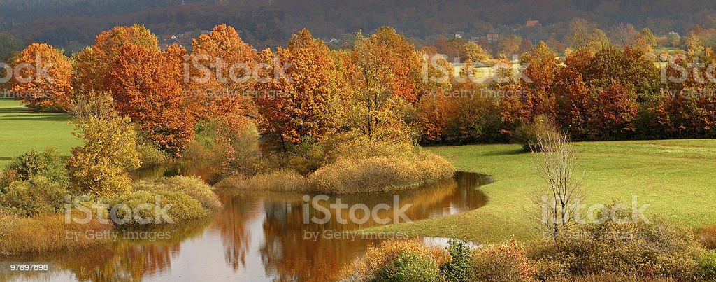 Autumn coloured trees royalty-free stock photo