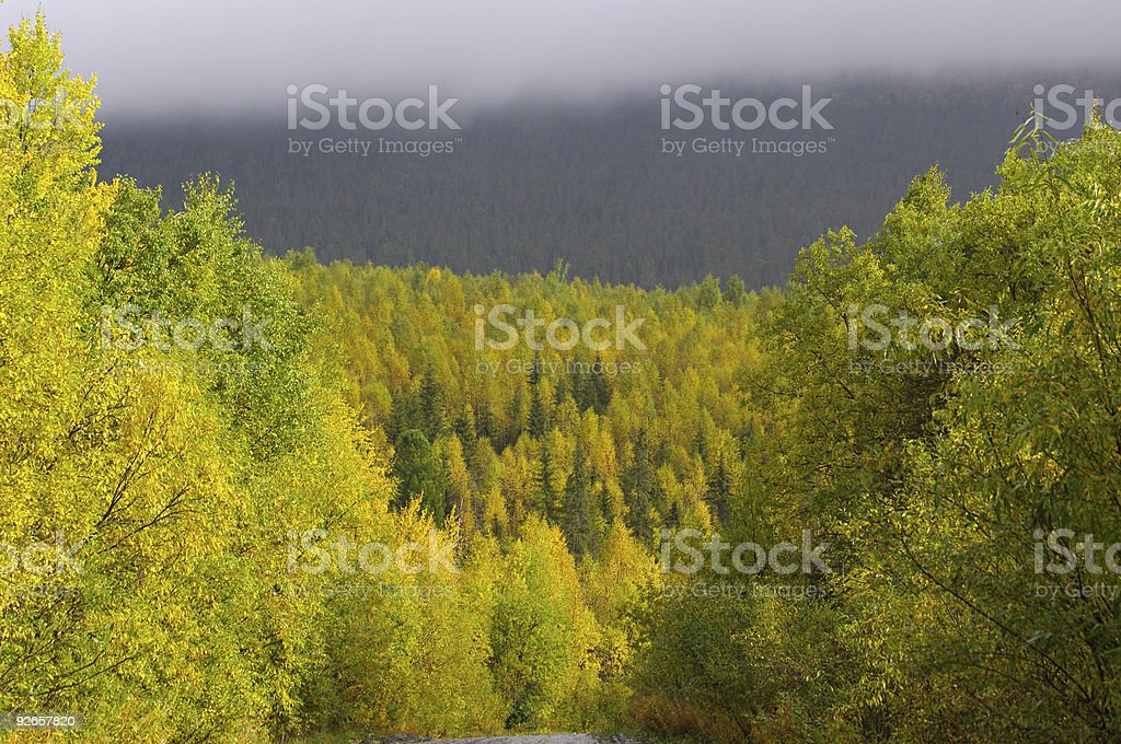 Autumn colourful landscape. royalty-free stock photo