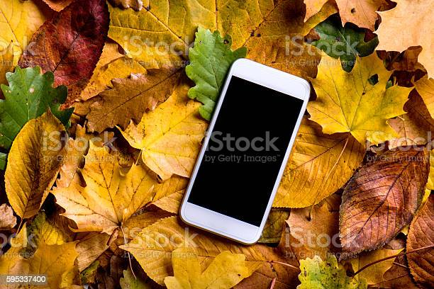 Photo of Autumn composition. Colorful leaves and smart phone. Studio shot