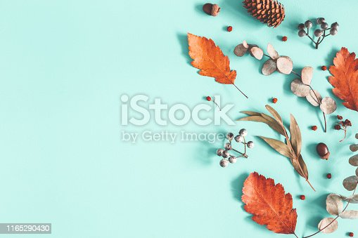istock Autumn composition. Dried leaves, flowers on pastel blue background. Autumn, fall, winter concept. Flat lay, top view, copy space 1165290430
