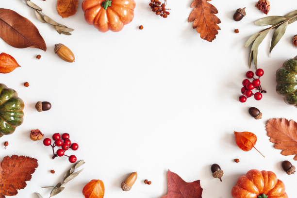 autumn composition. dried leaves, pumpkins, flowers, rowan berries on white background. autumn, fall, halloween, thanksgiving day concept. flat lay, top view, copy space - composition stock pictures, royalty-free photos & images