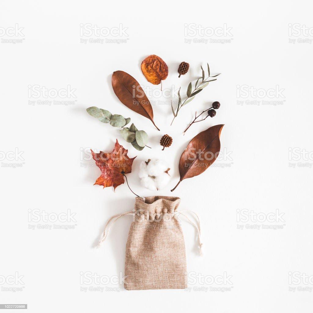 Branche Fleur De Coton photo libre de droit de composition automne branches
