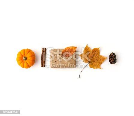 istock Autumn composition. Flat lay 869099812