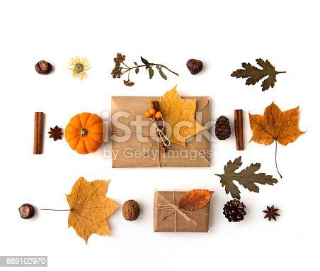istock Autumn composition. Flat lay 869102970