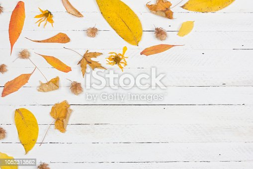 istock Autumn composition. Frame made of autumn dried yellow leaves on white wooden background. Flat lay, top view, copy space 1052313862