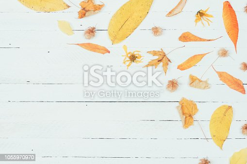 istock Autumn composition. Frame made of autumn dried yellow leaves on white wooden background. Flat lay, top view, copy space 1055970970
