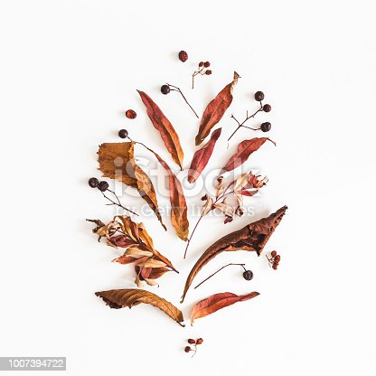 istock Autumn composition on white background. Flat lay, top view, square 1007394722