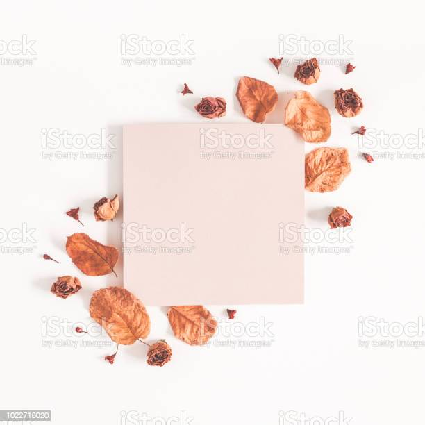 Autumn composition paper blank dried flowers and leaves on white picture id1022716020?b=1&k=6&m=1022716020&s=612x612&h=ngytlzji6z ljt9ngwkk9 s6utw3 9b3idth yndzn0=