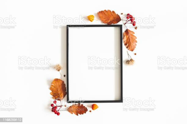 Autumn composition photo frame flowers leaves on white background picture id1168259112?b=1&k=6&m=1168259112&s=612x612&h=k3zgrjqnos0emigmt2vffxzzukamz4zr8j54zsglqco=