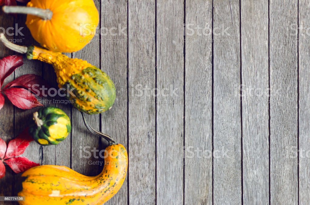 Autumn composition stock photo