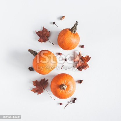 Autumn composition. Pumpkins, dried leaves on pastel gray background. Autumn, fall, halloween concept. Flat lay, top view, square