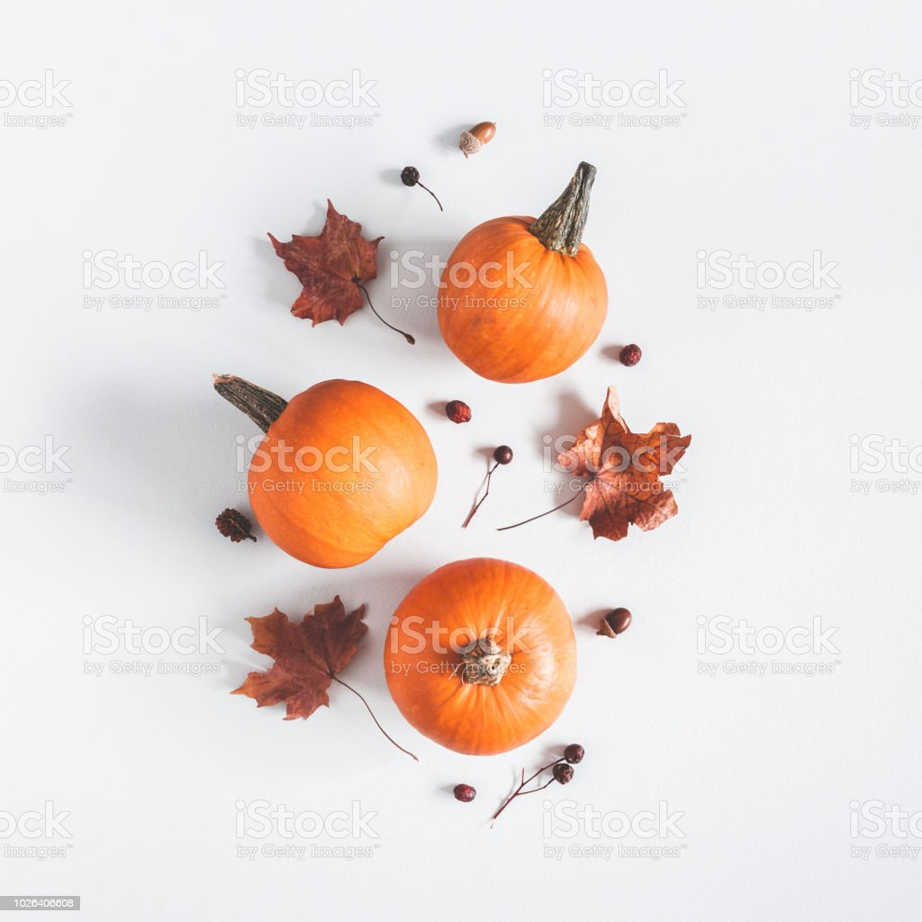 Autumn composition. Pumpkins, dried leaves on pastel gray background. Autumn, fall, halloween concept. Flat lay, top view, square stock photo