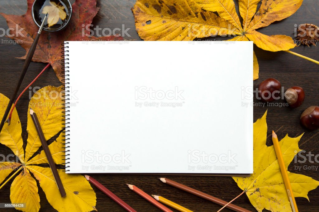Autumn composition with empty album and fallen leaves stock photo