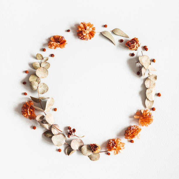 Autumn composition. Wreath made of dried flowers, eucalyptus leaves, berries on gray background. Autumn, fall, thanksgiving day concept. Flat lay, top view, copy space, square stock photo