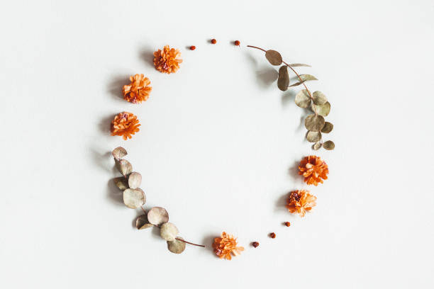 Autumn composition. Wreath made of dried flowers, eucalyptus leaves, berries on gray background. Autumn, fall, thanksgiving day concept. Flat lay, top view, copy space stock photo