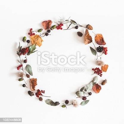 istock Autumn composition. Wreath made of eucalyptus branches, rose flowers, dried leaves on white background. Autumn, fall concept. Flat lay, top view, copy space, square 1032448808
