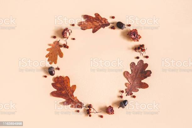 Autumn composition wreath made of oak leaves flowers acorns on beige picture id1163894998?b=1&k=6&m=1163894998&s=612x612&h=xcine5k02d lzrgwe2othqbr1t1evxxwj2xgm6ntcws=