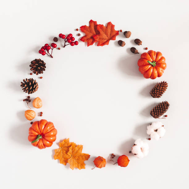 Autumn composition. Wreath made of pumpkins, flowers, leaves on gray background. Autumn, fall, halloween, thanksgiving day concept. Flat lay, top view, copy space, square stock photo