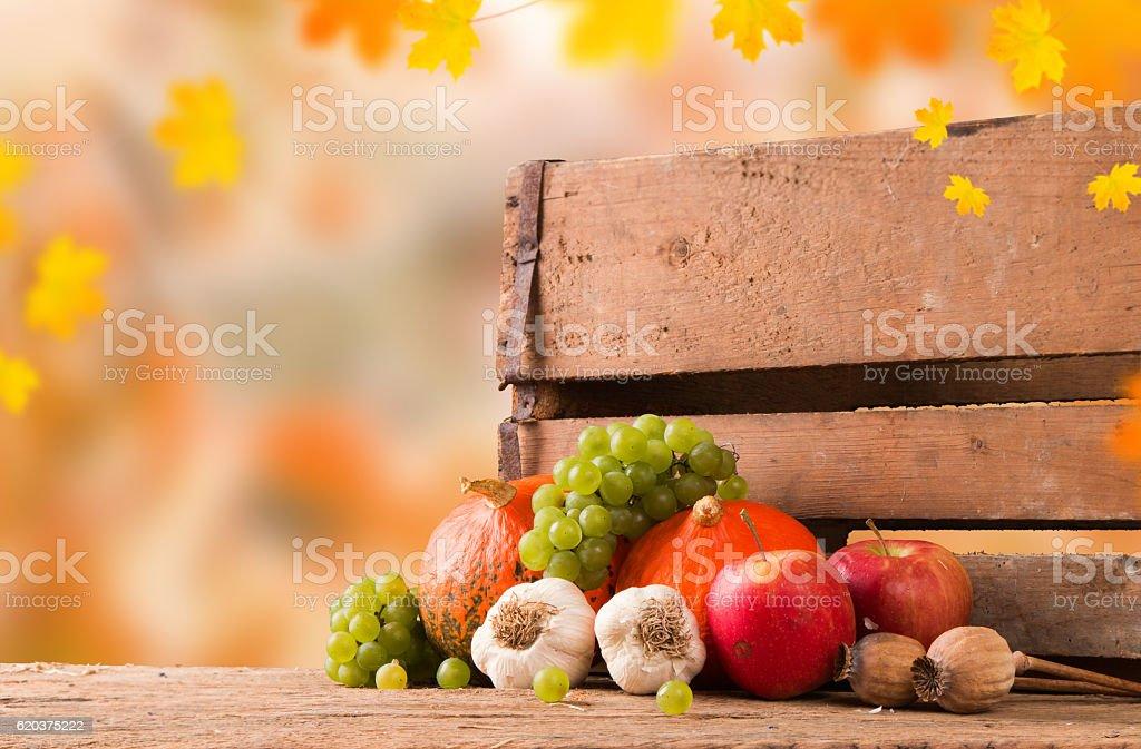 Conceito de Outono foto de stock royalty-free