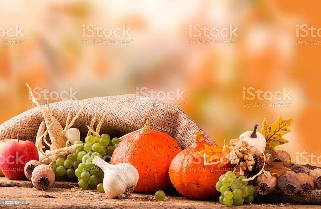 Jesień koncepcja zbiór zdjęć royalty-free